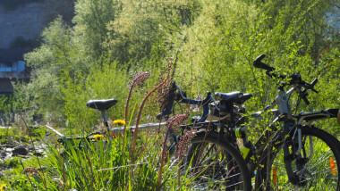 CycleHope